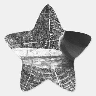 Apple na textura de madeira adesito estrela