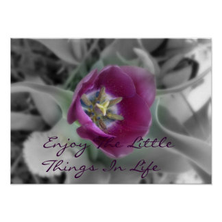 Aprecie as coisas pequenas na vida pôster
