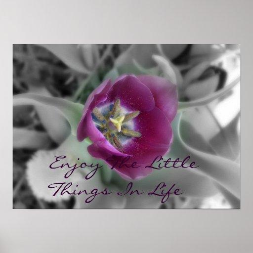 Aprecie as coisas pequenas na vida impressão