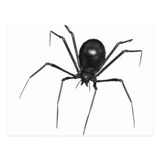 Aranha 3D assustador preta grande Cartões Postais