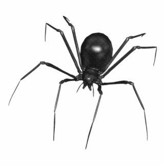 Aranha 3D assustador preta grande Fotoesculturas