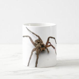 aranha caneca de café