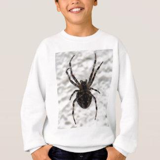 Aranha da aranha agasalho