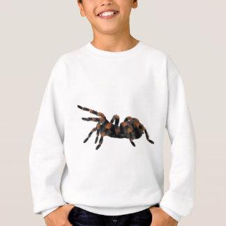 Aranha de passeio do Tarantula Agasalho