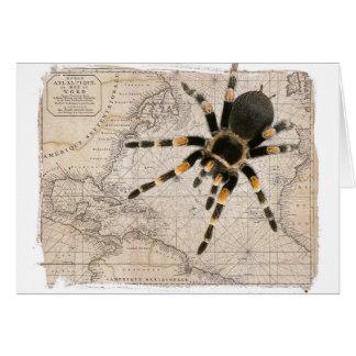 aranha do mapa cartão