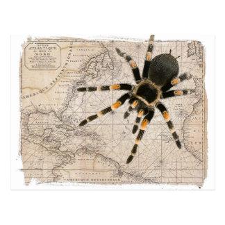 aranha do mapa cartão postal