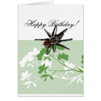 aranha do tarantula em cartões do design da flor