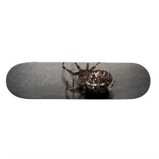 aranha dos desenhos animados shape de skate 18,4cm