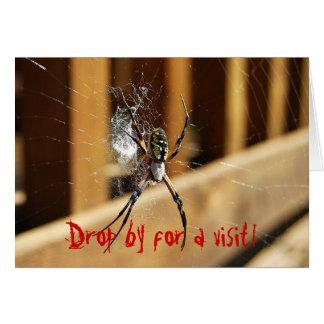 Aranha em sua Web -- Gota perto para uma visita! Cartão Comemorativo