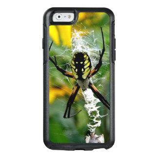 Aranha impressionante da esfera da foto na Web