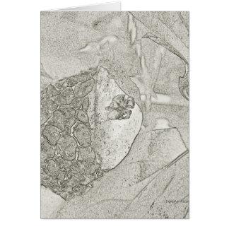 Aranhas e cartão da arte do esboço do lápis do