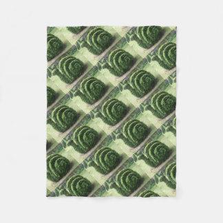 Arbusto decorativo do caracol de jardim do verde cobertor de lã
