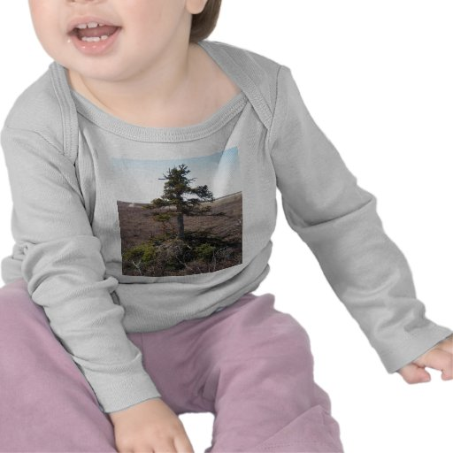 arbusto do kotz em Alaska T-shirts