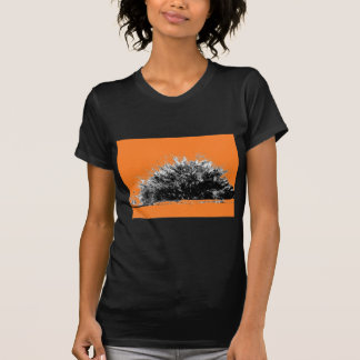 Arbusto selvagem do deserto com laranja t-shirt