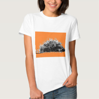 Arbusto selvagem do deserto com laranja t-shirts