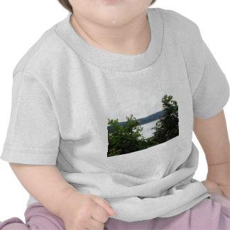 Arbustos de florescência na água camisetas