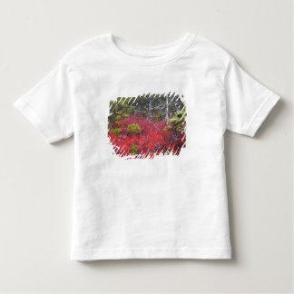 Arbustos e pinhos de mirtilo t-shirts