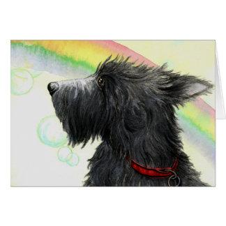 Arco-íris do Scottie e cartão das bolhas