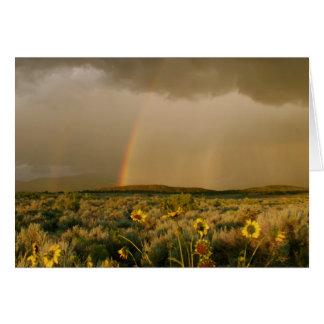 Arco-íris do vale do San Luis Cartão Comemorativo