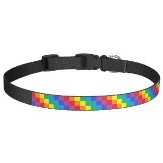 Arco-íris esquadrado coleira