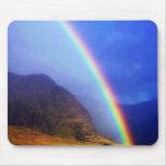 Arco-íris havaiano Mousepad
