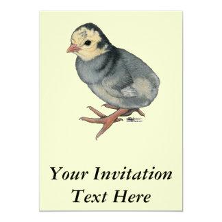 Ardósia do azul da ave jovem de Turquia Convite 12.7 X 17.78cm
