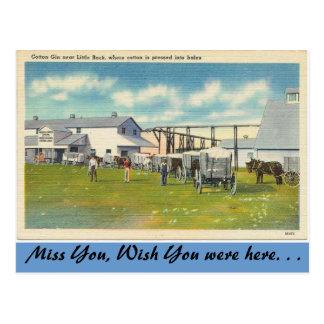 Arkansas, gim de algodão cartão postal