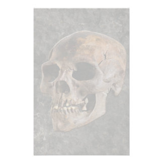 Arqueologia II - Crânio no fundo do Pedra-efeito Papelaria