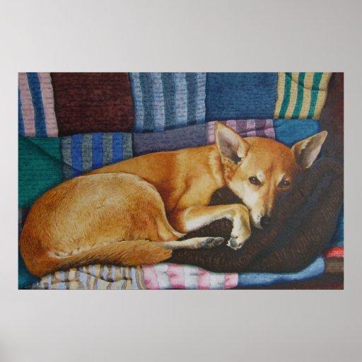 arte alemão bonito do retrato do animal de estimaç posteres