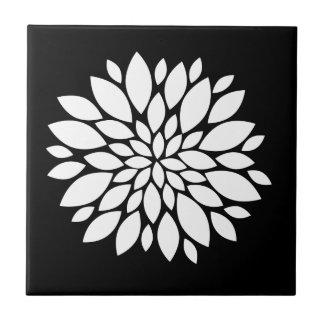 Arte bonito das pétalas da flor branca no preto