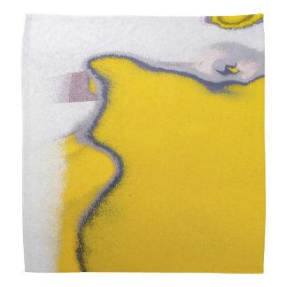 Arte da casca da pintura do carro lenço