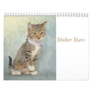 Arte do calendário que caracteriza animais do