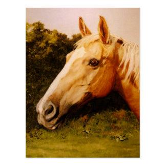 Arte do cavalo do Palomino Cartão Postal