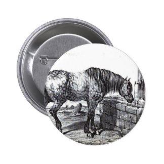 Arte do desenho do vintage do cavalo de Percheron