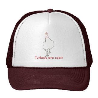 Arte do esboço - o suporte de Turquia, perus é leg Bones