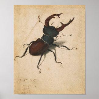 Arte do vintage do renascimento do besouro de poster