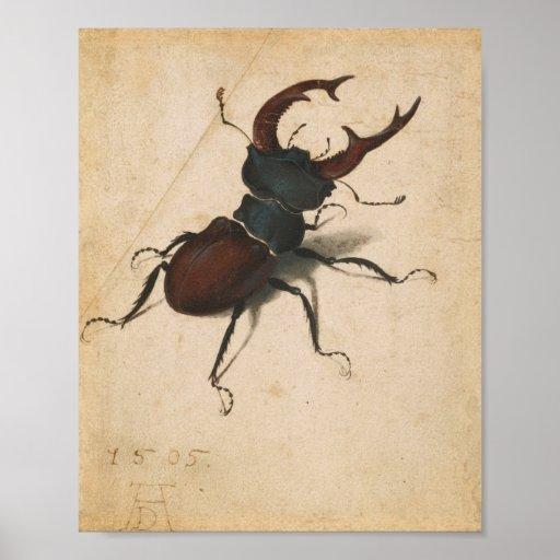 Arte do vintage do renascimento do besouro de vead posteres