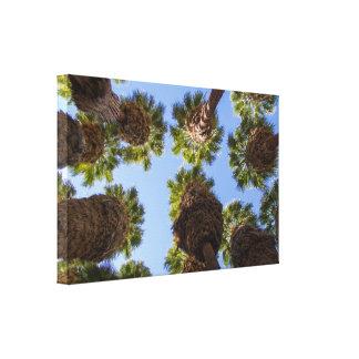 Arte original das canvas da opinião das palmeiras