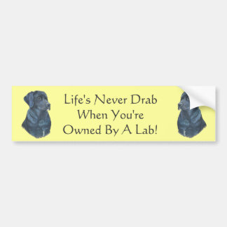 arte preta do retrato do cão de Labrador com sloga Adesivo Para Carro