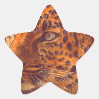 arte - selvagem adesivo estrela