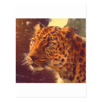 arte - selvagem cartão postal