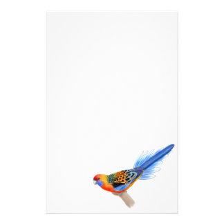 Artigos de papelaria do papagaio de Adelaide Rosel