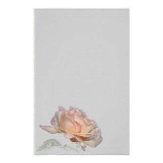 Artigos de papelaria do rosa do rosa