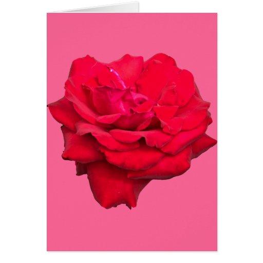Artigos de papelaria  -- Um único cartão da rosa v