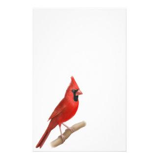 Artigos de papelaria vermelhos cardinais do homem