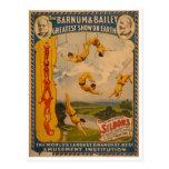 Artistas de trapézio Barnum & Bailey 1896 Cartão Postal