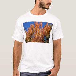 Árvore alaranjada do fogo camiseta