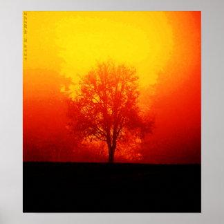 Árvore ardente pôster