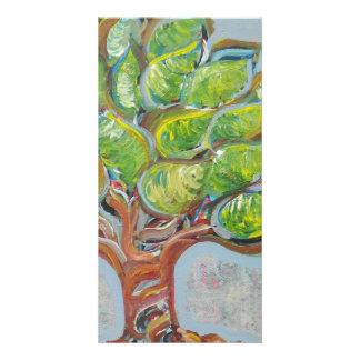 Árvore colorida cartão com foto