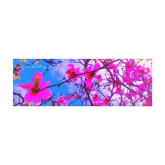árvore da magnólia da foto das canvas 36x12x1.5
